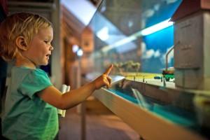 """Wie funktioniert das? Kinder können die Besonderheiten des Stettiner Haffs spielerisch entdecken, zum Beispiel an den Mitmachstationen der Naturparkstation von Eggesin. Foto: djd/Tourismusverein """"Stettiner Haff"""" e.V."""